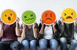 O Ciclo das Emoções