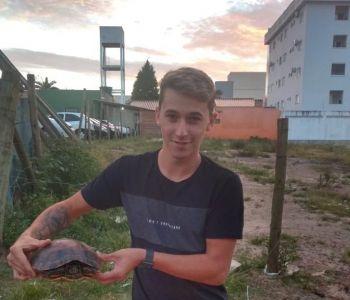 Tartaruga grande é encontrada 'caminhando' no Centro de Araranguá