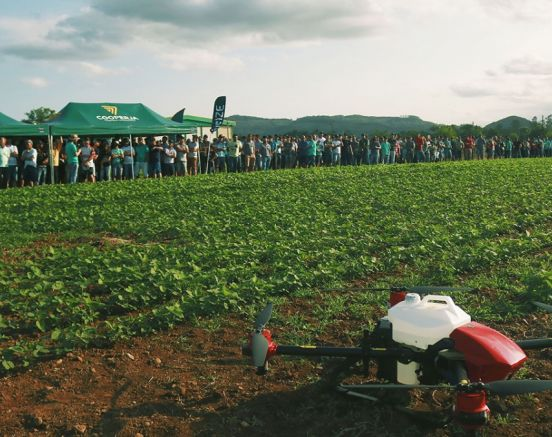 Agricultura catarinense em transformação
