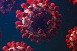 Coronavírus em SC: Estado confirma 1.096.616 casos, 1.063.375 recuperados e 17.679 mortes