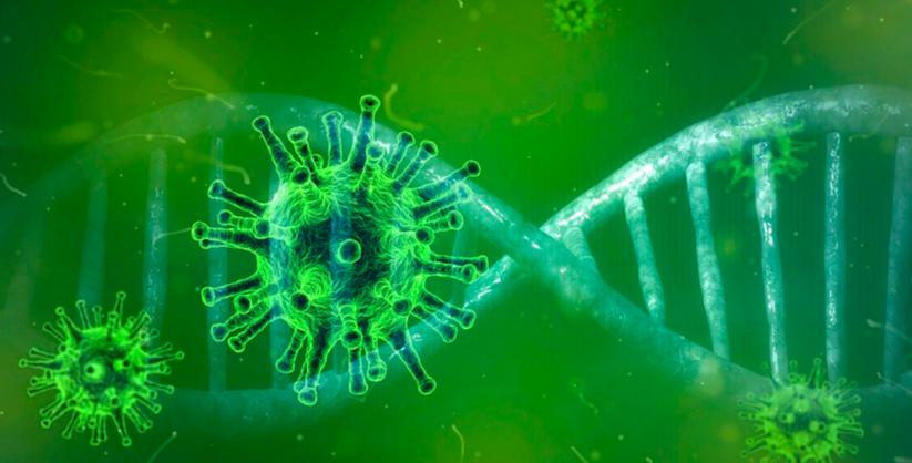 Coronavírus em SC: Estado confirma 1.100.959 casos, 1.068.170 recuperados e 17.726 mortes