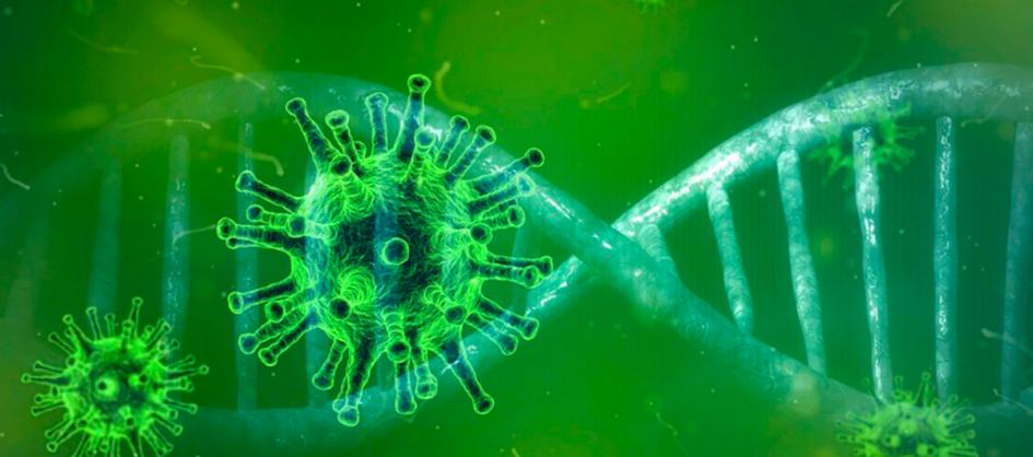 Coronavírus em SC: Estado confirma 1.100.959 casos, 1.068....