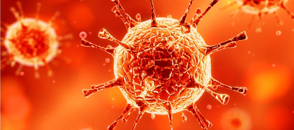 Coronavírus em SC: Estado confirma 1.103.428 casos, 1.071....