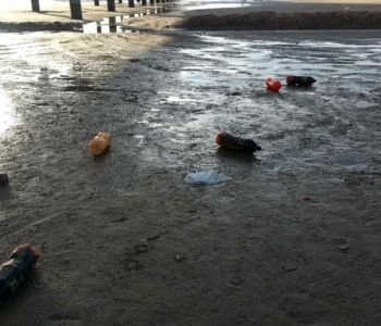 Lixo alarmante em Plataforma de Pesca
