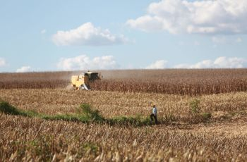 Departamento de Agricultura dos Estados Unidos destaca investimentos de SC para ampliar pr...
